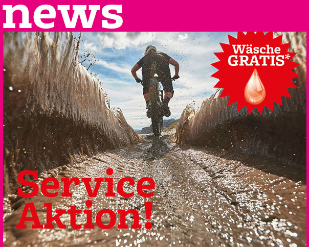 Read more about the article HERBST-SERVICE-AKTION!