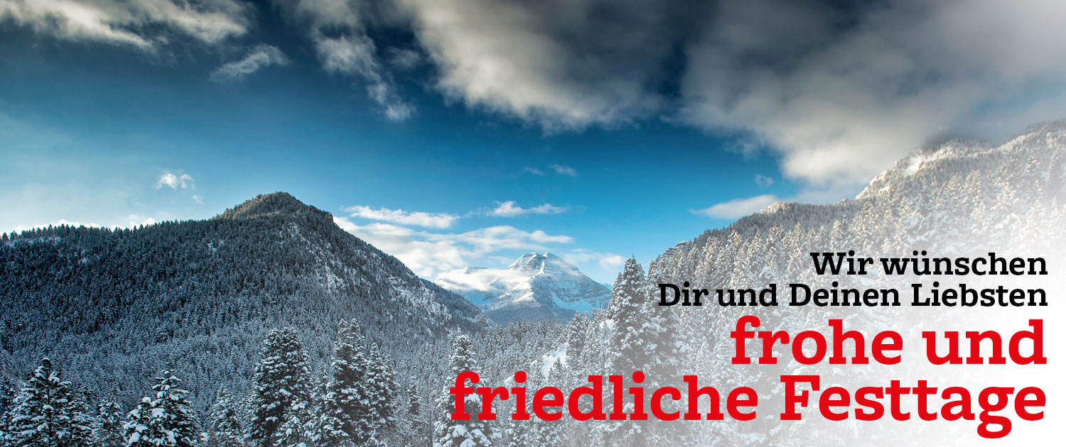 Read more about the article FROHE WEIHNACHTEN!